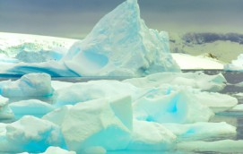 Antarctica…  Come for the cold.  Stay for the Freeze!